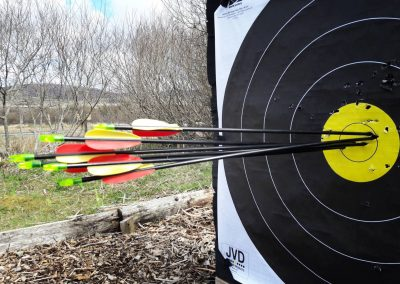 ACE Target Sports Archery bullseye